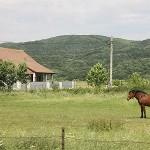 photo d'un paysage de campagne