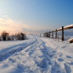 photo paysage janvier