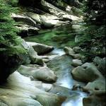 photo nature riviere