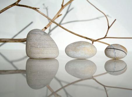 photo nature zen