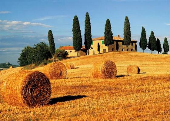 paysages-de-toscane