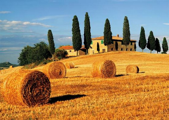 paysage-de-toscane