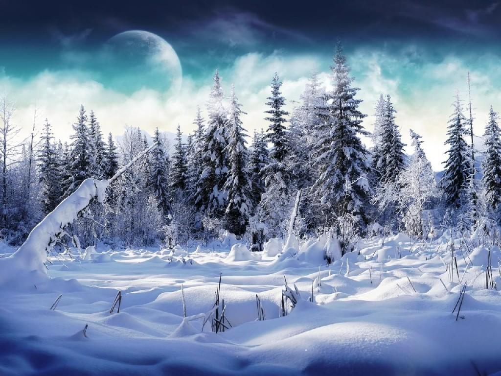 Photo paysage hiver gratuit 3 for Paysage gratuit
