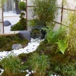 photo paysage jardin japonais
